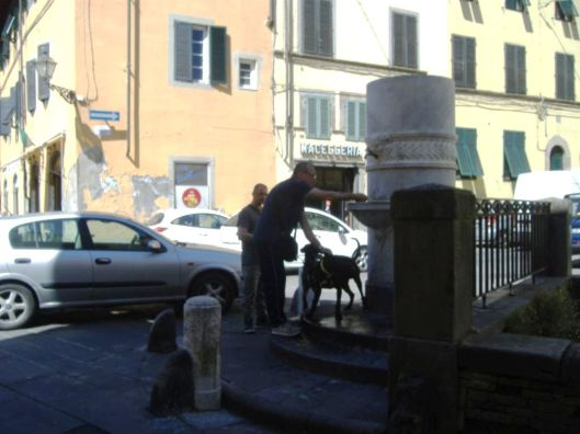 Lucca (1)