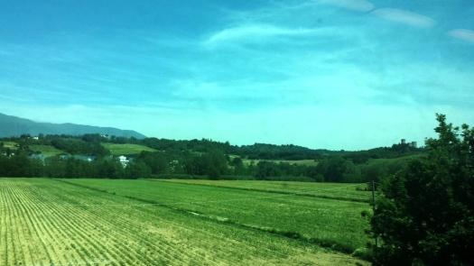 On the way to Cortona