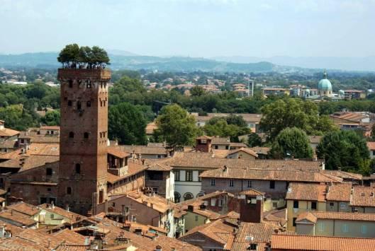Guinigi tower 1