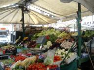 the-markets-in-piazza-dei-signori-5