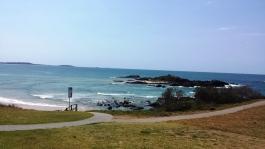 Boambee Headland
