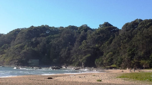 Charlesworth Bay